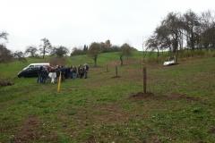 HirschornPflanz20131